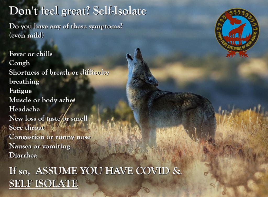 self-isolate PSA covid-19