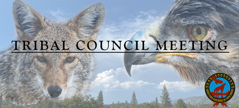 tribal council cover image with coyote and gold eagle
