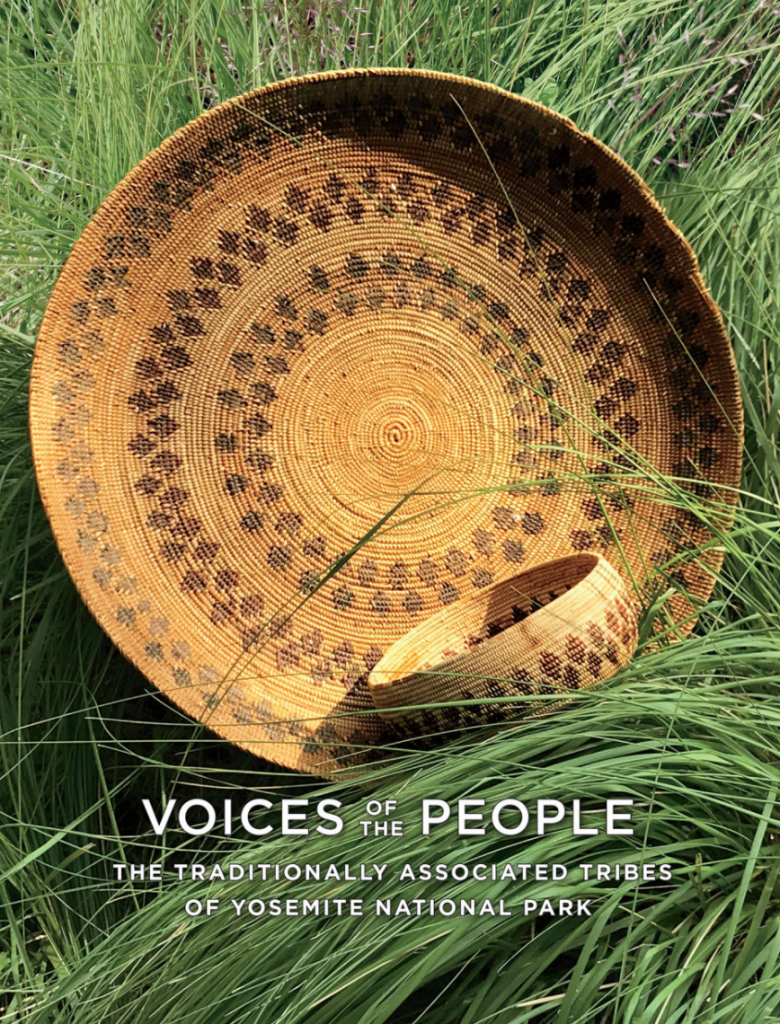 voices of the people book cover